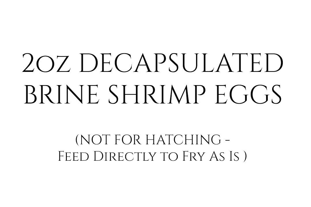 2oz Decapsulated Brine Shrimp Eggs