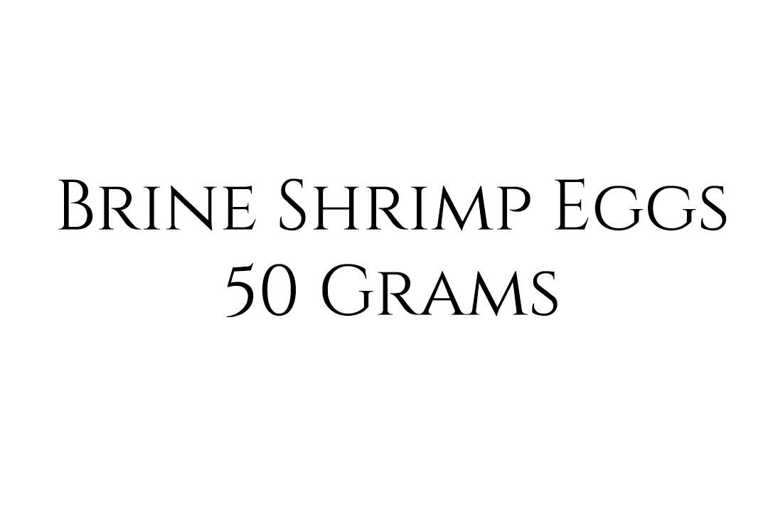 50 Grams Brine Shrimp Eggs
